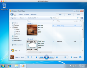 Windows Media Player.png